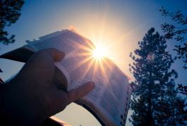 BibleLight free